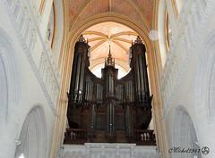 Les grandes orgues de la Cathédrale Saint Corentin, Quimper (Finistère) (michel2947) Tags: eglise orgues quimper bretagne france fr