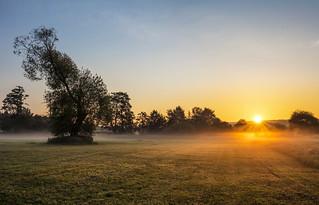 misty morning dawn