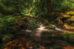 Bodetal Harz (Joachim Behnke) Tags: wasserfall wald forest natur steine farben landscape harz bodetal braunlage wasser licht waterfall nikond5300 nikon sigma1020mm sigma lightroom