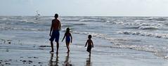 IMG_0640.1 (mikehogan2) Tags: padreisland nationalseashore texas family beach ocean malaquite