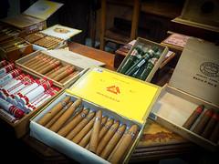 RA230047.jpg (robynmichelle79) Tags: cuba havana vacation cohiba cigar cruise