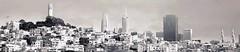 s.f., je t'aime (勇 YoungAdventure) Tags: san francisco サンフランシスコ 샌프란 시스코 舊金山 nikkor50mmf2 nikkorhauto50mmf2 coittower transamerica building landscape skyline