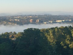 fog in the city.... (mar-itz) Tags: sandiego freeway view fog sunset hike walk cloud green nature california mountains carmelvalley torreypines park light urban road building maritza explore travel
