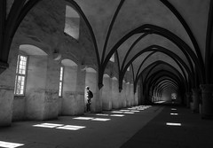 moments (Georgie Pauwels) Tags: monochrome blackandwhite monastery light shadows indoor fujifilm candid moment streetphotography arch dome roof arches windows sunlight