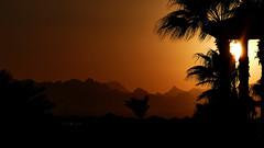 egypt1915_433_21092015_17'21 (eduard43) Tags: ferien somabay sheraton egypt 2015