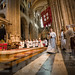 "Ordination of Priests 2017 • <a style=""font-size:0.8em;"" href=""http://www.flickr.com/photos/23896953@N07/35503140232/"" target=""_blank"">View on Flickr</a>"
