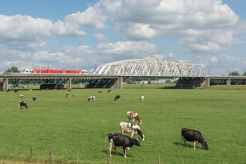 Arnhem-Westervoort Arriva Spurt 367