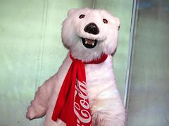 Coca-Cola Polar Bear (meeko_) Tags: polar bear polarbear cocacola cocacolapolarbear characters disneycharacters cocacolastore cocacolastoreorlando orlando shop towncenter springs disneysprings walt disney world waltdisneyworld florida explore