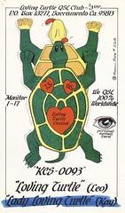Runnin Bare #0528: Loving Turtle and Lady Loving Turtle - Sacramento, California (73sand88s by Cardboard America) Tags: vintage runninbare qsl cbradio cb qslcard eyeball turtle divorce california