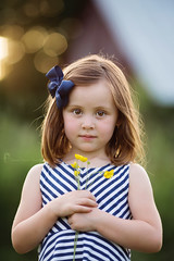 Buttercups (Shannon Alexander Photography) Tags: vermontphotographer childphotography goldenhour flowers buttercups vermont child girl canon 5dmarkiii 135mmf2l