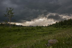 Stormy K Country (Len Langevin) Tags: canada alberta kananaskis mountains rocky rockies storm thunder sky clouds meadow wildflowers landscape scenery nikon d7100 nikkor 18300