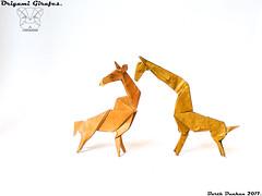 Origami Girafes - Barth Dunkan. (Magic Fingaz) Tags: barthdunkan girafe giraffe jerapah jirafa origami žirafa καμηλοπάρδαλη жираф жирафа जिराफ़ ยีราฟ 기린 キリン 长颈鹿