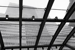 Bowling Green Subway Station Entrance/Exit Canopy (Zach K) Tags: nyctransit canopy bowling green bowlinggreen nyc lower manhattan lowermanhattan financial district subway bw black white fuji x100f fujifilm
