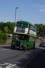 IMGP1941 (Steve Guess) Tags: leatherhead surrey england gb uk lcbs london transport country bus vintage preserved historic aec regent iii rt
