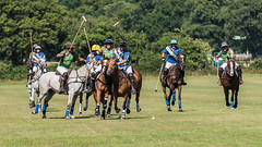 Polo riding off (DaveMac photography) Tags: polo newforest england newforestpoloclub sunday sunnyafternoon ponies equestrian equine mallets events pologame outdoors