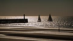 Nieuwpoort (BE) (de_frakke) Tags: nieuwpoort belgium port boat haven northsea noordzee westvlaanderen flanders