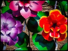 Der Stahlgarten (e r j k . a m e r j k a) Tags: ohio holmes berlin figure flowers lawn whimsy blooms us62 oh39 erjk explore