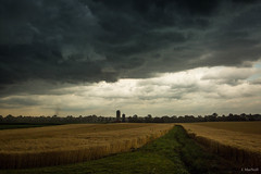 (Jen MacNeill) Tags: country rural pa pennsylvania farm clouds front grain rye wheat field storm storming stormy ominous dark leadinglines lines lancaster