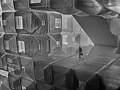 welcome in the future (heinzkren) Tags: mak vienna wien ausstellung exhibition 3d print 3dprint schwarzweis blackandwhite noiretblanc macro utopie science fiction biennale ars kunst museum museumfürangewandtekunst panasonic monochrome cube würfel modern architecture architektur