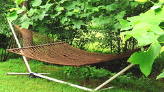 Flickr Friday: Vacation (Hayseed52) Tags: flickrfriday vacation shade creek brook summer comfortable hammock rest relaxation