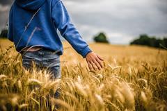 Caresser les blés (PaxaMik) Tags: été summertime summer blés wheat champdeblés wheatfield caresse caress countryside frenchcountry country