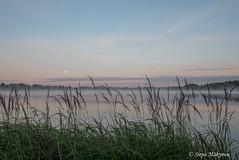 Aamu Kyrösjärvellä 3 (sirpamak) Tags: finland suomi lake järvi auringonnousu sunrise early morning landscape järvimaisema kyrösjärvi ikaalinen