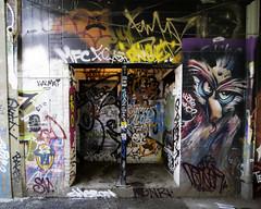 Hootie who? (aerojad) Tags: eos canon 80d dslr 2017 city urban art artinpublicplaces streetart publicart mural murals graffiti vacation travel wanderlust graffitialley toronto canada vibrant colorful