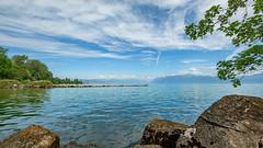 Lac Leman (FotoCorn) Tags: lacleman meervangeneve genfersee water meer lake blue préverenges morges lavenoge nature natuur switzerland suisse vaud