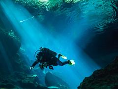 The X Factor (altsaint) Tags: 714mm chacmool gf1 mexico panasonic cavern caverndiving cenote scuba underwater