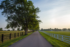 Dawn Breaks in the Kentucky Bluegrass Country (Bridget Calip - Alluring Images) Tags: alluringimagescolorado bridgetcalip fayettecounty horsecapitoloftheworld keenland kentucky kentuckybluegrass kentuckyscenicbyway lexington scenicbyway allrightsreserved blackfence bourboncounty cumulusclouds dawn horses racetracks roadslesstraveled stallions whitefence