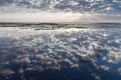 morning reflections  #4120 (lynnb's snaps) Tags: longreef coastalseashore digital nature sunrise reflections water clouds colour canon5d canonef24105mmf4lis landscape blue sunburst rays 2006 sydney horizon copyrightlynnburdekin2006