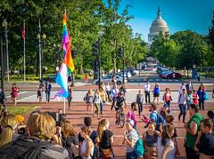 2017.06.26 WERK for Your Health, Washington, DC USA 6904