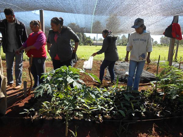 """Proyecto """"Mejora de la salud ambiental y humana en Tava´i a través de la agroforesteria desarrollada por mujeres rurales organizadas"""""""