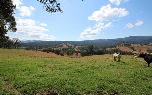 1524 Chichester Dam Road, Dungog NSW 2420