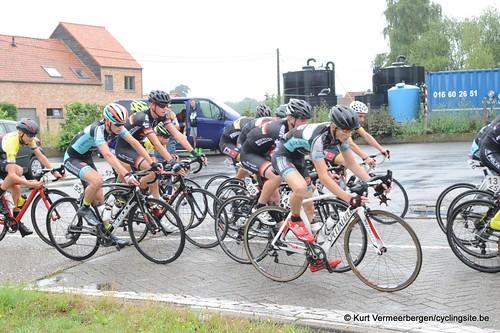 Blauberg Nieuwelingen (120)