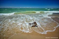 Crashing waves (mswan777) Tags: waves shore beach water driftwood summer sky cloud horizon lake michigan seascape coast nikon d5100 sigma 1020mm scenic wind landscape stevensville