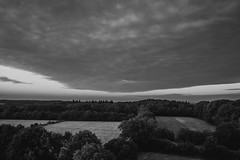 Clouds in the sky (stefanfortuin) Tags: sky clouds cloudy cloud classic lucht bw bnw black white trees forest woldberg tuk steenwijk steenwijkerwold eese drents friese wold dutch nederland netherlands friesland bewolking bewolkt outside buiten avond