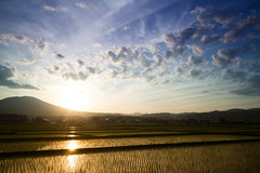 Golden Evening (jasohill) Tags: spring color exotic nature city gold iwate clouds sun blue rice hachimantai photography life sunset paddy adventure japan 2017 canonm japanese landscape background wallpaper