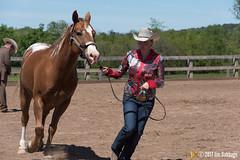 JBC_8394.jpg (Jim Babbage) Tags: krahc annualshow appaloosa horses