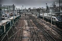 Paris, petit ceinture, 5 (Patrick.Raymond (5M views)) Tags: paris rail train sncf gare station hdr nikon beautifulphoto concordians
