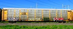 TTGX 980787 (timetomakethepasta) Tags: ttgx autorack csx freight train graffiti art myst pos burn benching selkirk new york photography kys moser