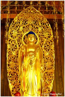 Buddha Looks At You - Steveston Buddhist Temple XT4554e