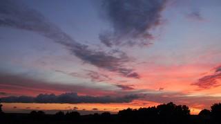 Blick aus meinem Fenster in den Abendhimmel (11)
