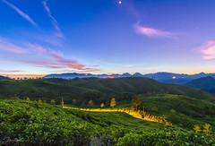 Sunrise at Cukul (jenvendes) Tags: indonesia bandung asia westjava sunrise morning landscape popular places destination teaplantation sky landmark summer trip adventure tourism