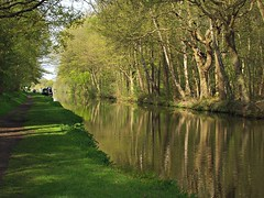 Coventry Canal near Fradley (nisudapi) Tags: 2016 staffordshire uk fradley canal coventrycanal rural landscape trees waterway reflection