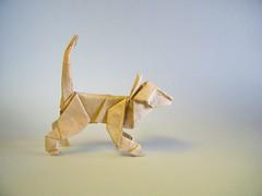 Cat - Tom Defoirdt (Rui.Roda) Tags: origami papiroflexia papierfalten gato chat cat tom defoirdt