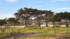 IMG_0013_15 Spanish Bay HDR (vicjuan) Tags: 20170625 美國 usa 加州 california montereycounty hdr tonemapping pebblebeach geotagged geo:lat=36608118 geo:lon=121951621