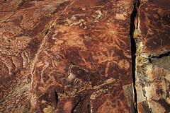 DSC07305 - NAMIBIA 2017 (HerryB) Tags: 2017 southafrica afrique afrika namibia namib südwest sonyalpha77 sonyalpha99 tamron alpha sony bechen heribert heribertbechen fotos photos photography herryb san bushmen buschmänner gravuren carvings engravings giraffe giraf zebra vandalisme vandalisiert peetalbertskoppie oppikoppi peetalbertskoppi ritzungen felsgravoren rockengravings kamanjab