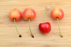 Dare to be different... (Maria Godfrida) Tags: food cherry cherries orange closeup garden nature summer natural different tasty sweet fresh tamron fruit 7dwf circlecrazy