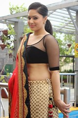 Indian Actress Nikesha Patel Hot Sexy Images Set-2 (31)